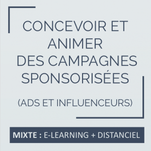 Formation community manager, réseaux sociaux, campagnes publicitaires